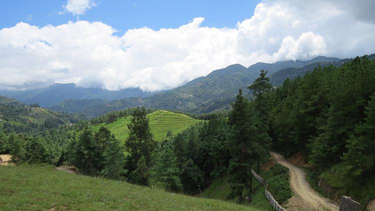 View from Switzerland danda